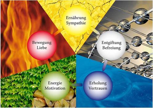 5 Elemente Sanierung
